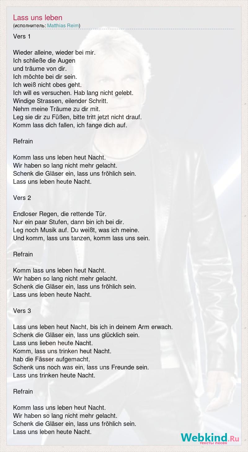 Matthias Reim Lass Uns Leben слова песни